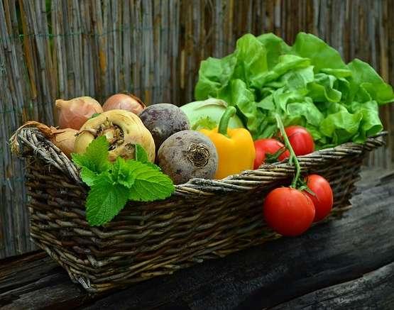 Veggi Gourmet
